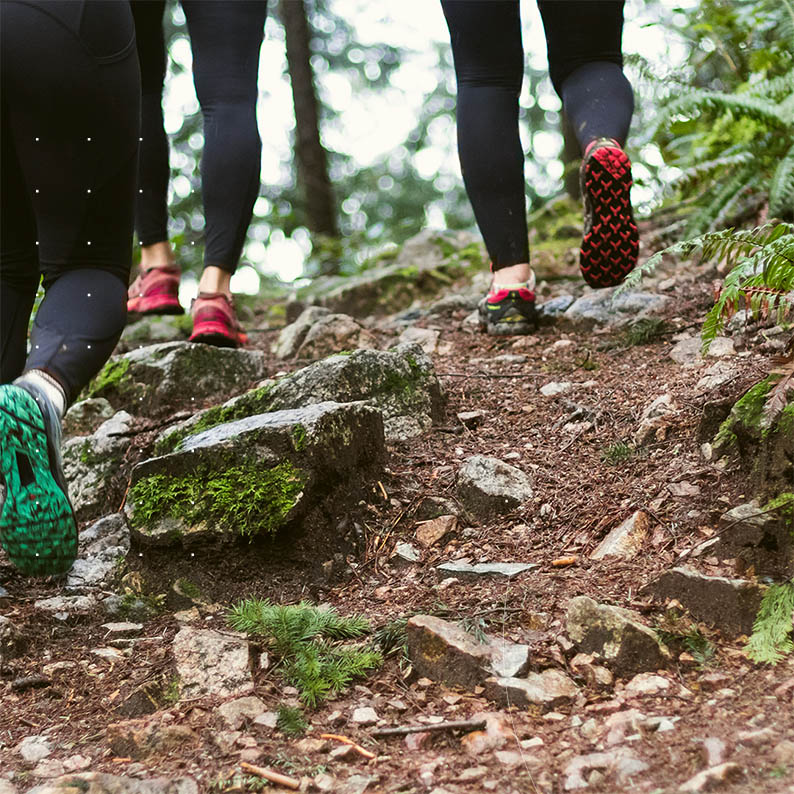 Blog Article training client - people's leg running in forest.